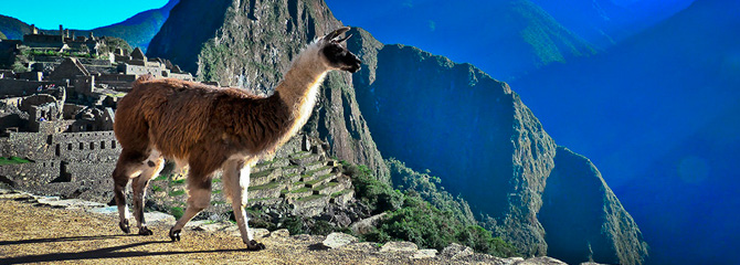 Deluxe Machu Picchu, Amazon Cruise and Galapagos Cruise